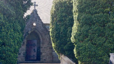 The yew trees front the entrance to the cathedral on Vivian St.